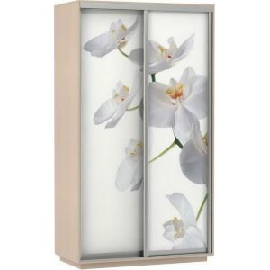 Фото хит орхидеи 120*220*60 Ясень шимо светлый сборка в подарок