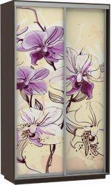 Фото дуо цветы 120*220*60 венге