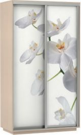 Фото хит орхидеи 120*220*60 дуб молочный сборка в подарок