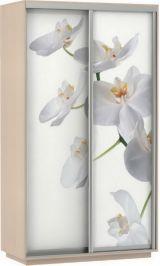 Фото дуо орхидея 120*220*60 дуб молочный