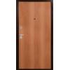 Аргус лайт 1 (миланский орех) металлическая входная дверь