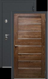 Легион 1 черный шелк/кипарис металлическая входная дверь